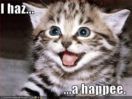 funny-pictures-kitten-has-a-happy.jpg