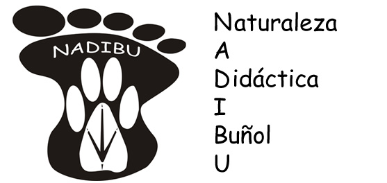 NADIBU - Naturaleza Didactica Buñol