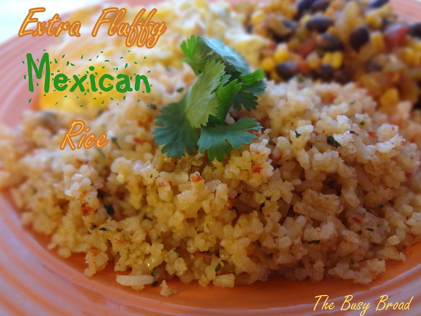 My Mexican husband gives his stamp of approval on this dish! Pretty ...