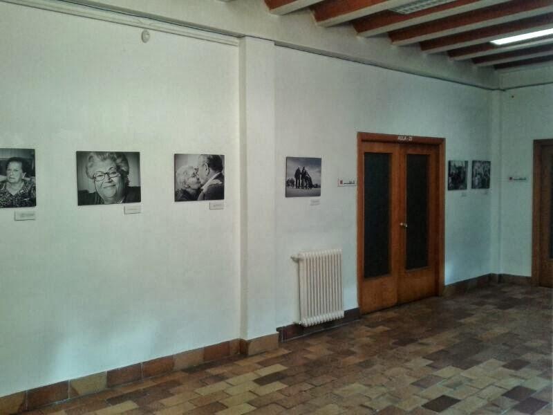 Afa almansa albacete casa de cultura exposici n - Casas en almansa ...