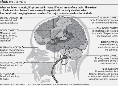 8 Surprising Ways Music Affects and Benefits our Brains - Brain and Music
