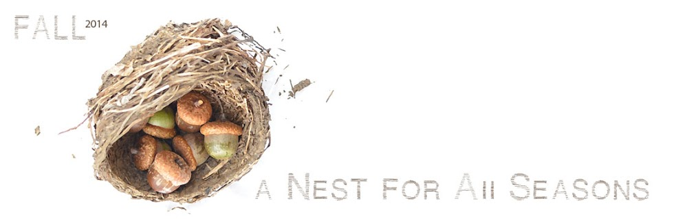 A Nest for All Seasons