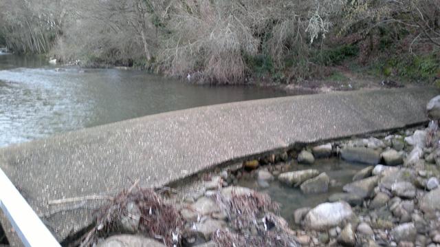 Imagen del Río sin apenas caudal, imagen tomada por el club de pescadores Peña de la Cruz