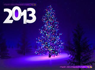 صور شجرة الكريسماس عليها تاريخ سنة 2013