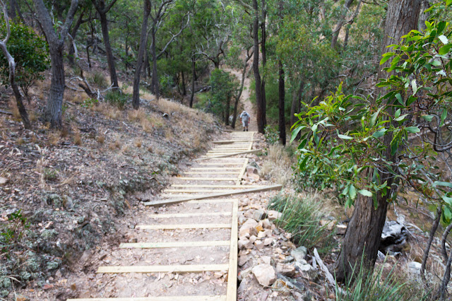 stairs near ironbark gorge
