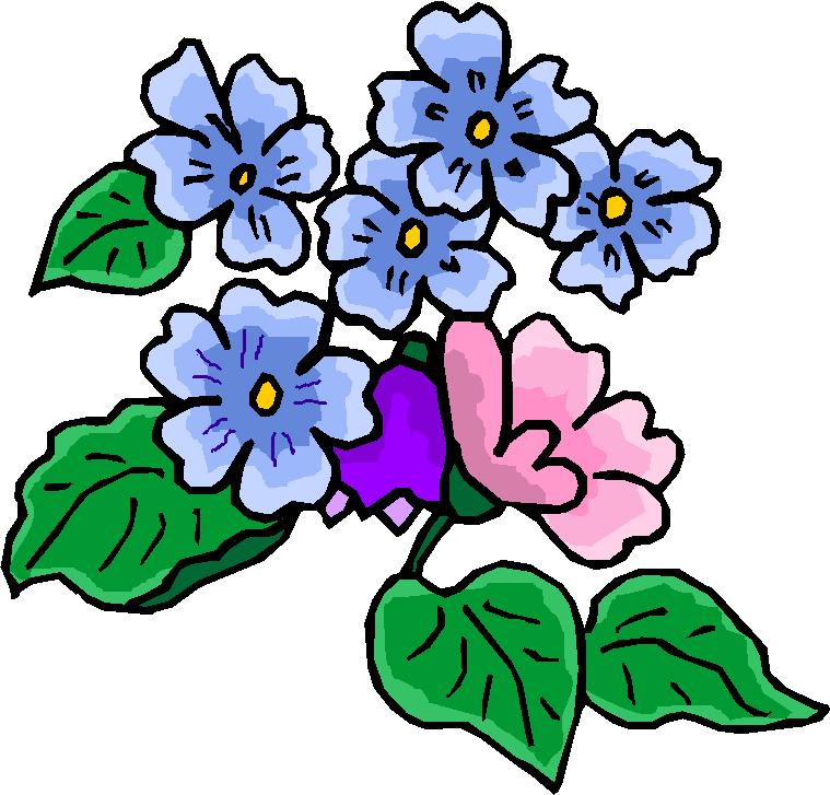Flower Bloom Clip Art