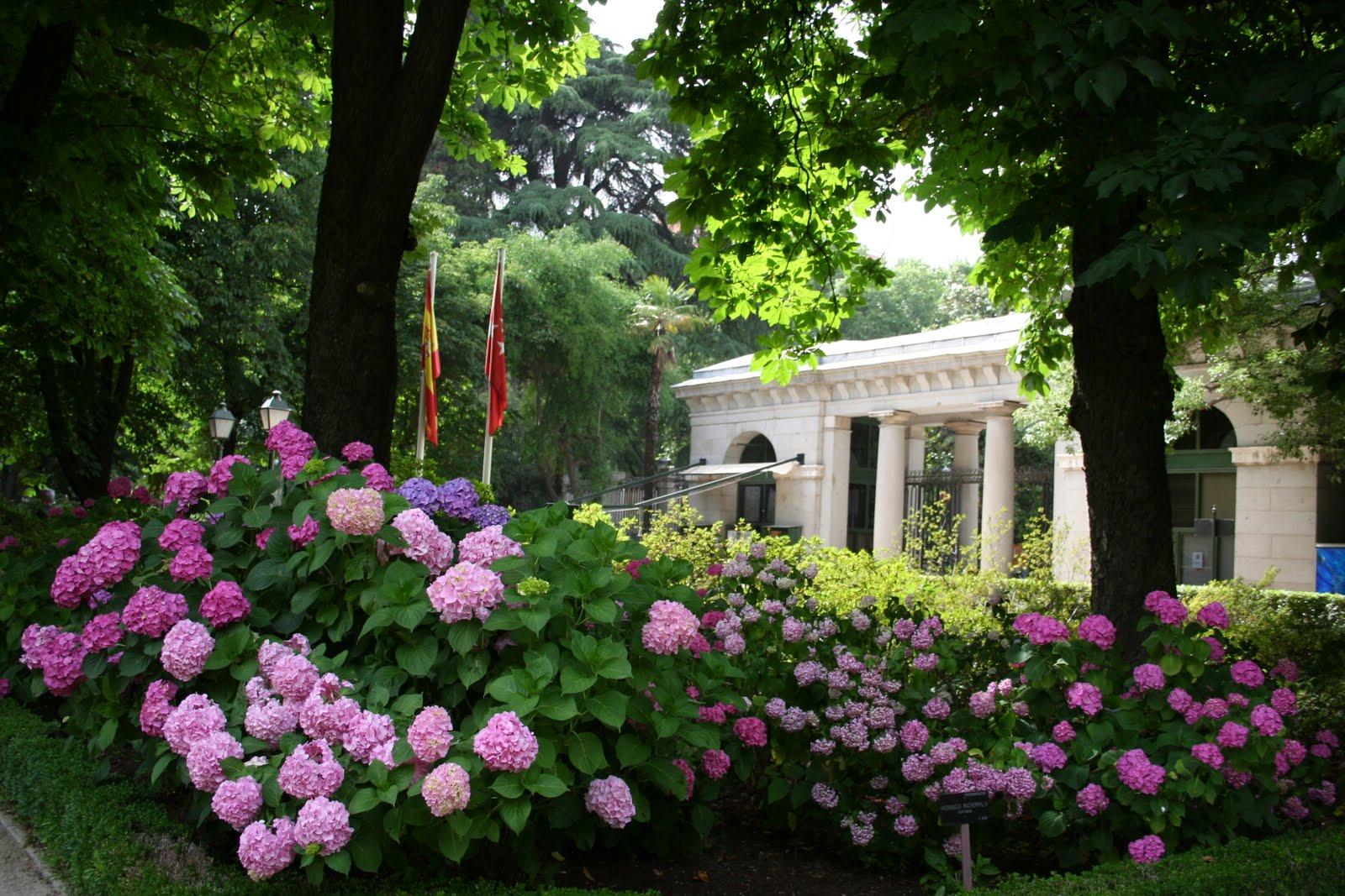 La ruta de los museos abril 2011 for Entrada jardin botanico madrid