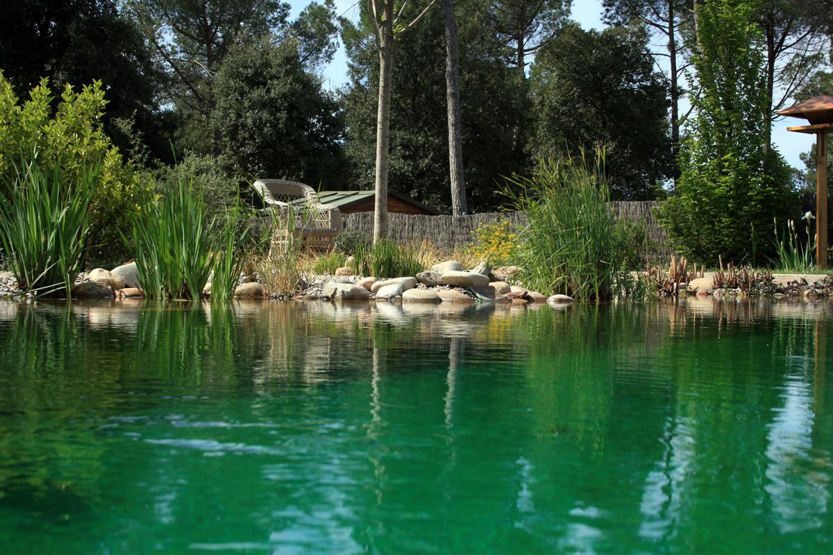 piscinas ecologicas como ba arse en el rio biostyle es