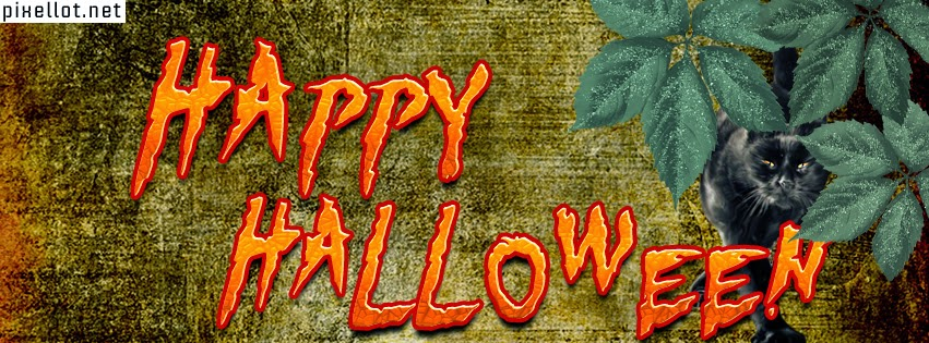 Halloween Bilder Facebookbilder