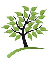 The Fuller Family Tree