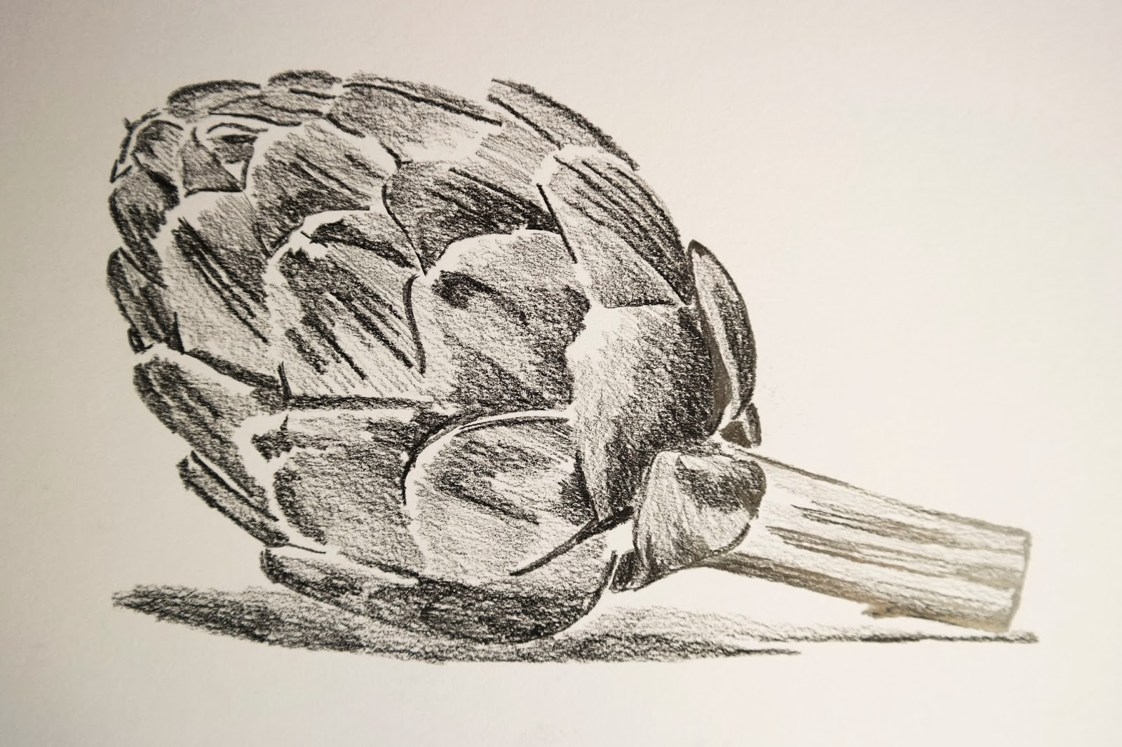 Line Drawing Natural Forms : Tonal study ocadrawing jfm