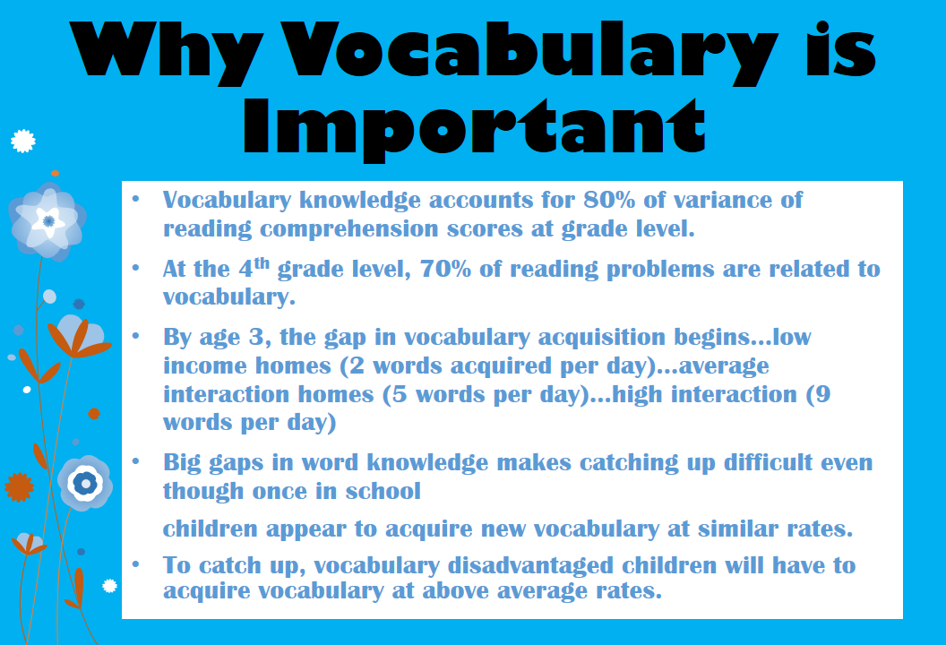 vocabulary is