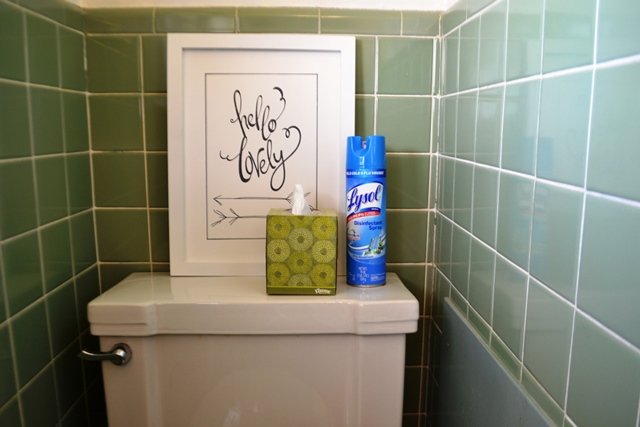 Keep tissues and Lysol handy for guests