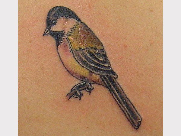 birds tattoos for you sparrow bird tattoos. Black Bedroom Furniture Sets. Home Design Ideas