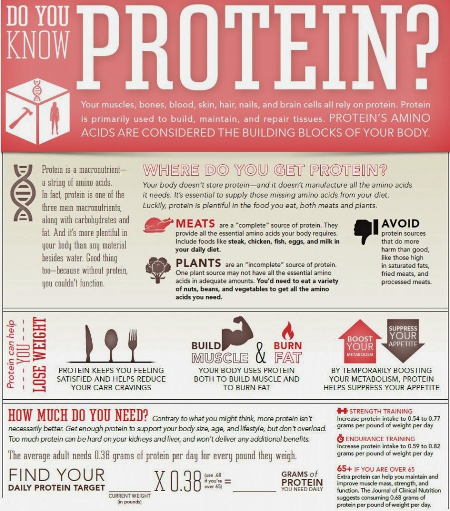 the importance of proteins in the human body What are amino acids twenty percent of the human body is made up of protein the importance of amino acids for human well-being is on the increase.