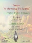 CONCURSO INTERNACIONAL DE LA JUVENTUD