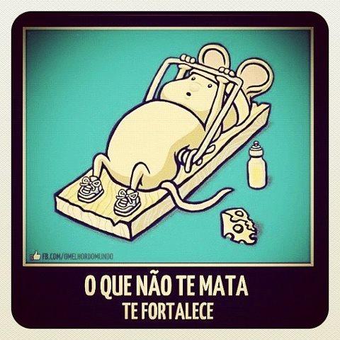 Piadas Pro Facebook Frases Para Facebook 001