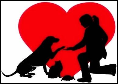 POR LA VERDAD, POR LA RAZÓN, Y POR AMOR A LOS ANIMALES ¡NO A LOS FALSOS ANIMALISMOS!