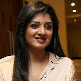 Vimala Raman Latest Photos in Jeans at Trendz Life Style Expo 2014 Inauguration 0023
