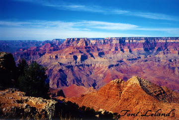 Grand Canyon in winter by Toni Leland