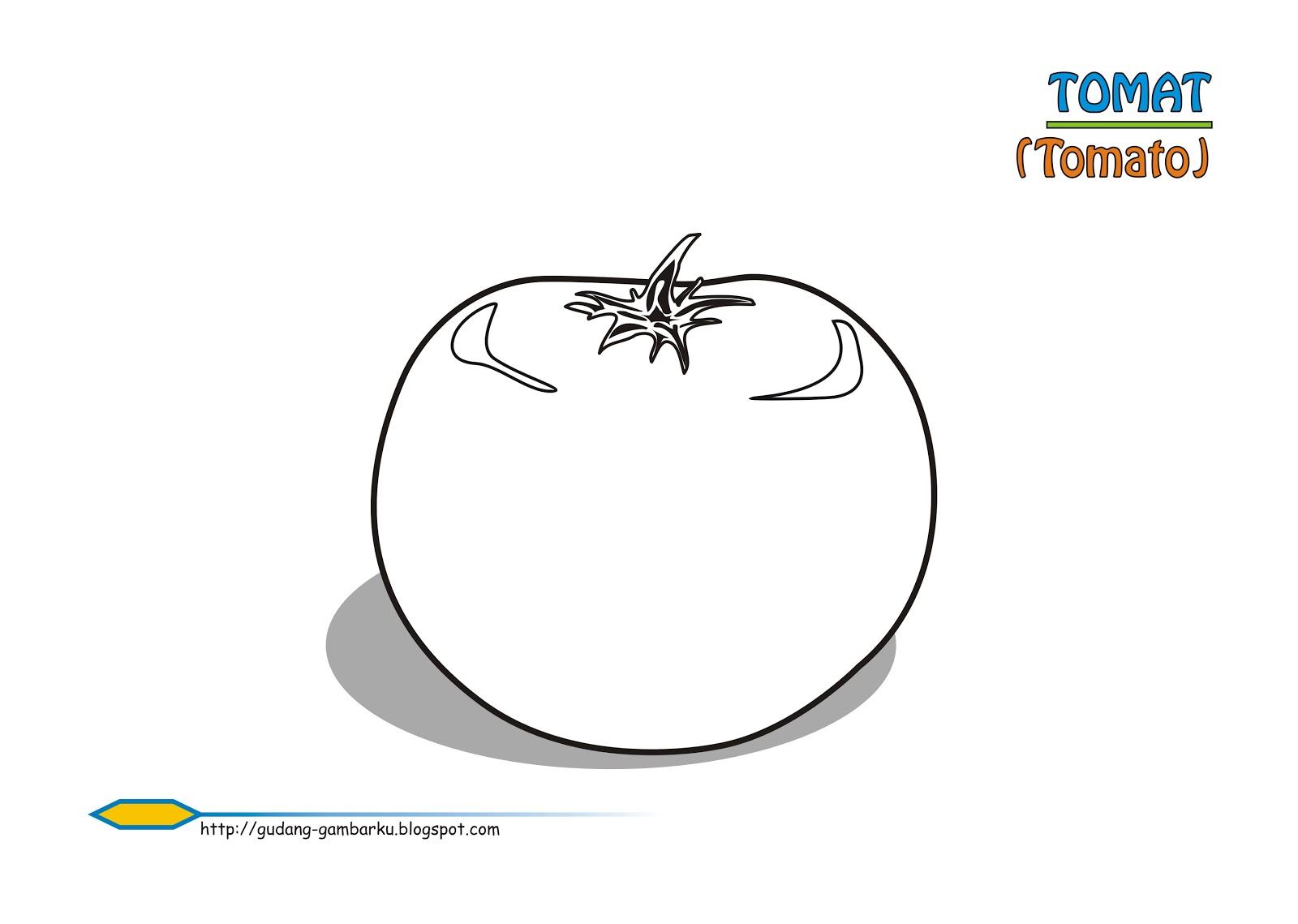 TOMAT 2