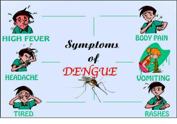 speech how to control dengue fever The mosquito solution can genetic modification eliminate a deadly tropical traditional mosquito control all but eradicated aedes the exponential growth of dengue fever the number of cases reported to the world health organization has increased thirtyfold since 1965 can, at.
