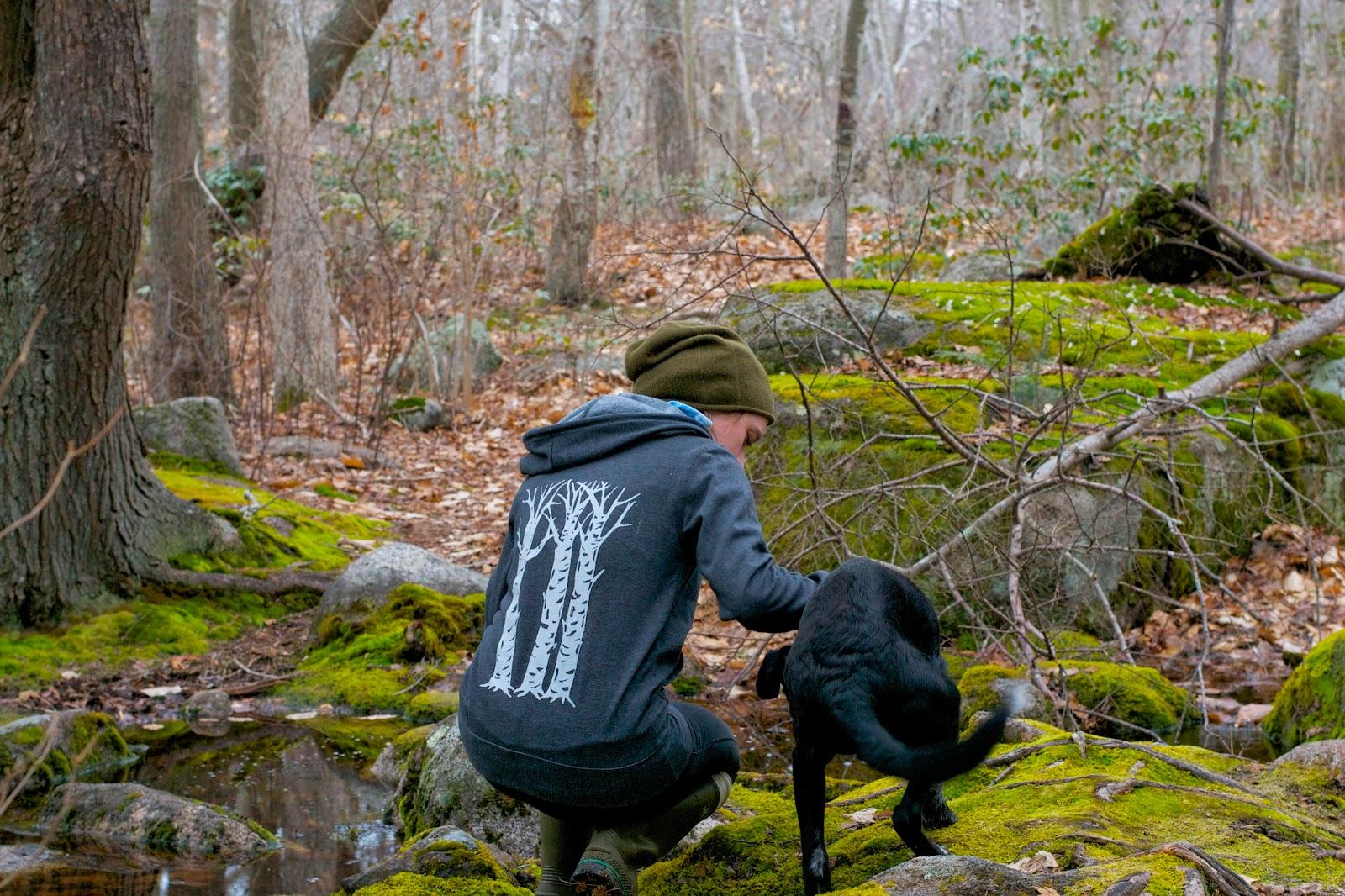 "Hand screen printed, organic cotton hoodie in the shop now! Original design, ""Three Sisters"" birch trees on charcoal hoodie."