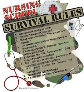 educational journey into nursing rn bsn Designed for nurses who hold a registered nurse (rn)  education the rn-bsn program at  the programs prepare nursing students for progression into higher.