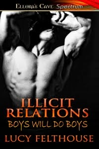 Illicit Relations by Lucy Felthouse