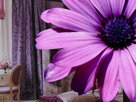 Bedroom on Decorating Bedroom Ideas Use Purple   Decors Art   Decorating Ideas