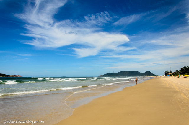 florianopolis campeche brasiia