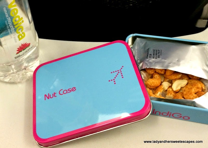 IndiGo airlines nut case