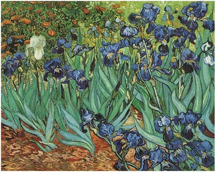 My favorite painting - Van Gogh's Irises.