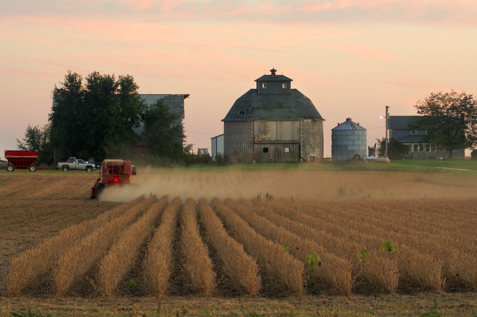 http://www.npr.org/blogs/thesalt/2015/03/18/393841311/pain-from-the-grain-corn-belt-towns-languish-as-prices-drop