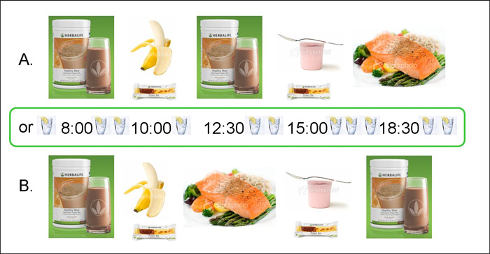 Herbalife Weight Loss Meal Plan