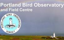 PORTLAND BIRD OBS