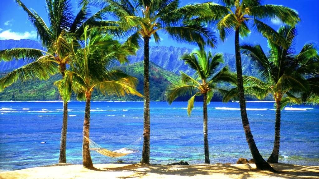 hawaii tropical beach wallpaper - photo #17