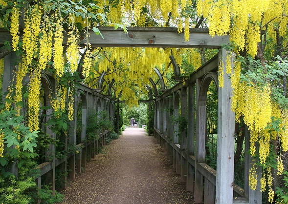 covered garden walkway INSPIRATION ARCHIVE: COVERED GARDEN WALKWAY