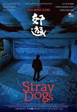 Jiaoyou (Stray Dogs) (2013)