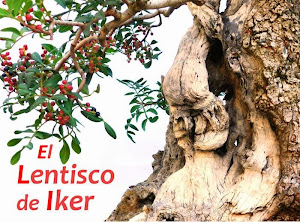 El lentisco de Iker