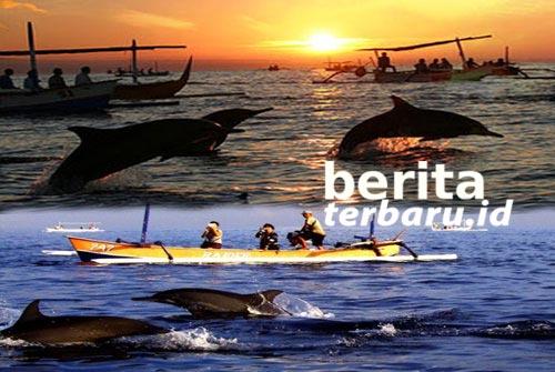 Lumba-lumba Pantai Lovina Bali