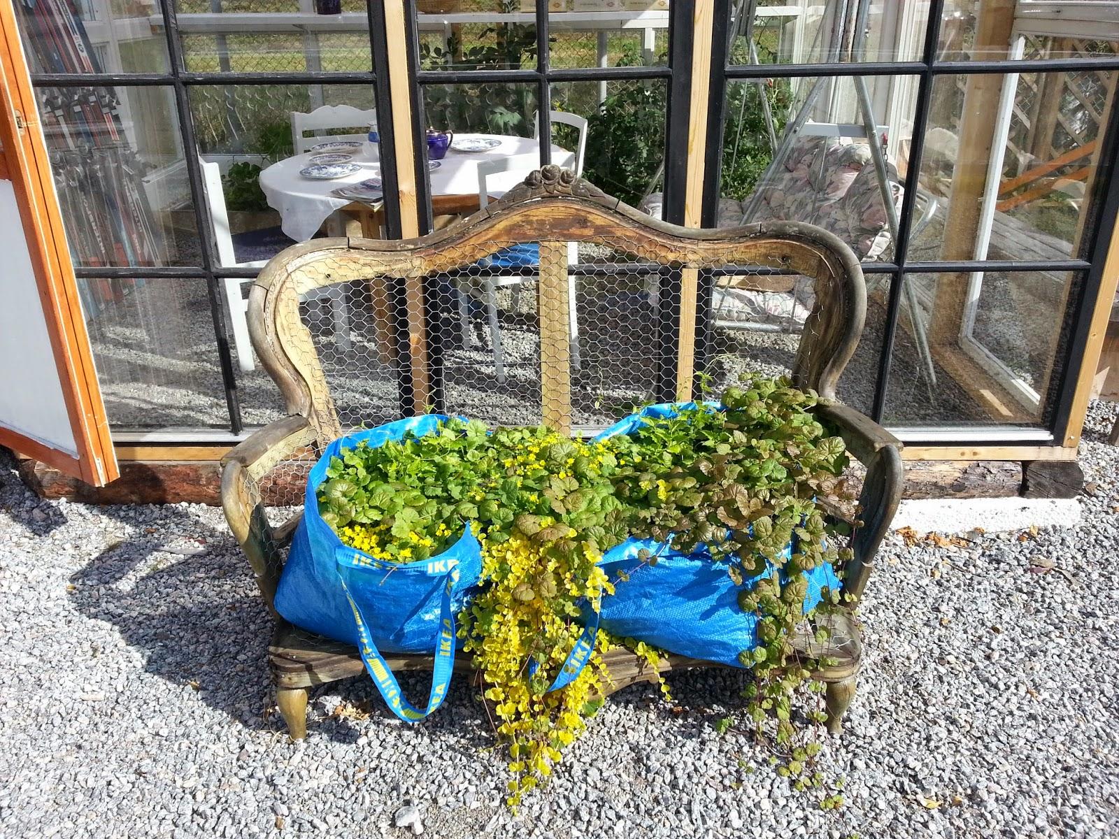 Växthus Odla : Odla sin trädgård trånar efter växthus
