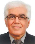 عبدالحسین زین کوب، نمونه فرهنگ پرداز شرقی