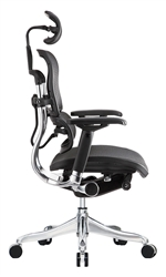 Ergo Elite Chair Review