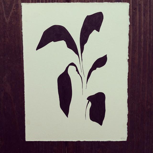 Lana Fee Rasmussen, Plant, 18/32