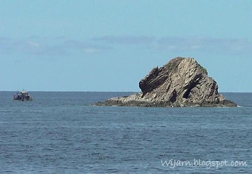 หินยักกะโดง (หินต้นไม้)