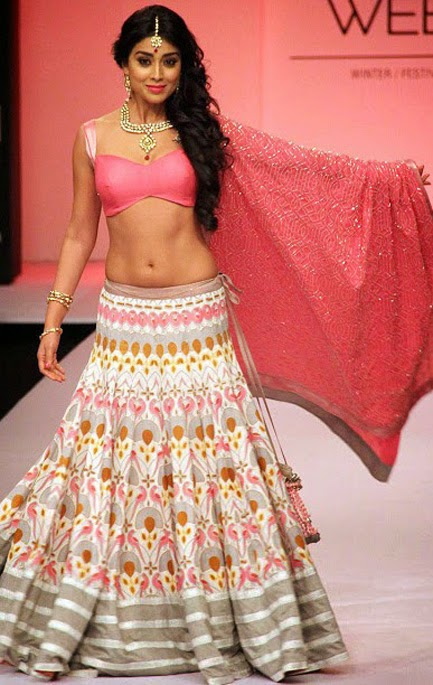 Shriya Saran Hot Navel Photo indianudesi.com