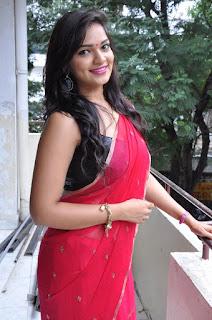 Actress Ashwini  Pictures in Red Saree at Hora Hori Platinum Disc Function  024.jpg
