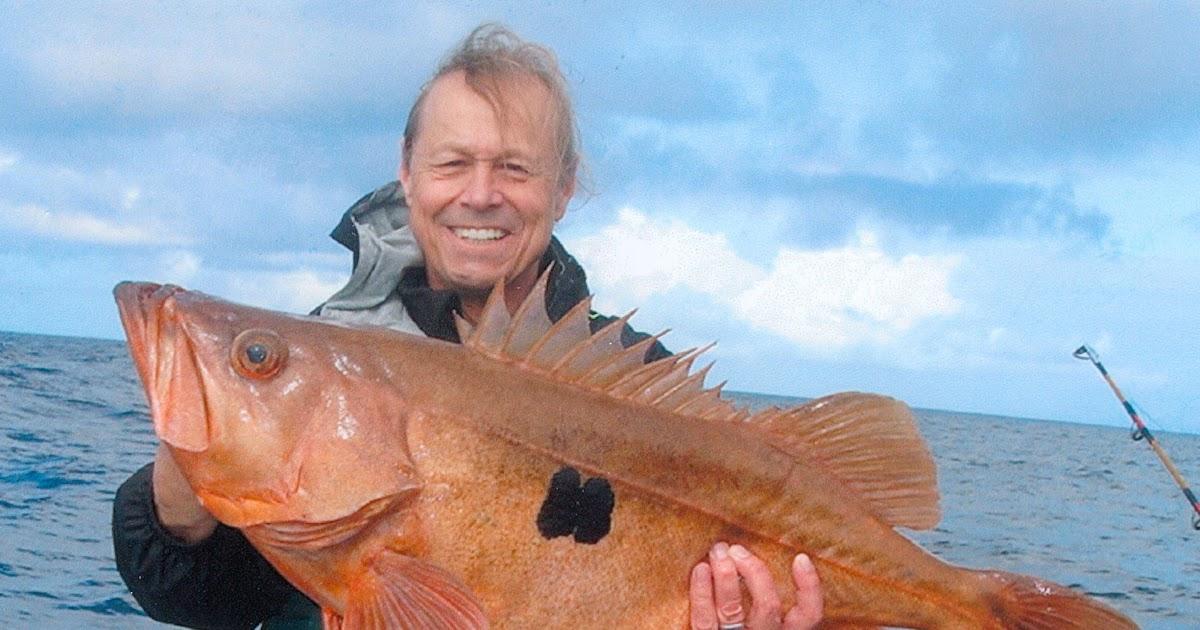 Big fishes of the world boccaccio sebastes paucispinis for Big fish in the ocean