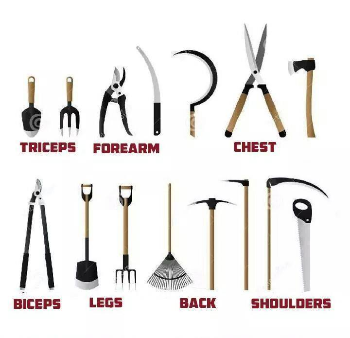 Landscape Tools Names And Pictures : Landscaping tools names garden design with landscape
